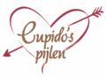 logo Cupido´s pijlen