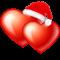 nickyzbookz met kerstmuts